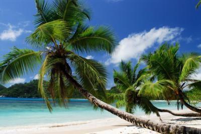 Asiakkaamme matkakertomus Mauritiukselta & Seychelleiltä